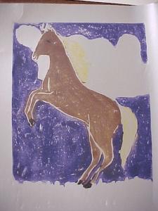 color horse print